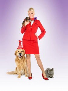 Pets fly in style with Virgin Atlantic Cargo!