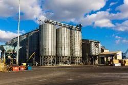 ABP grain resized
